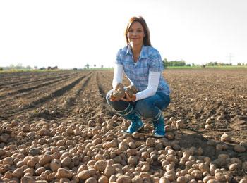 Farmářům seberou práci zemědělské stroje