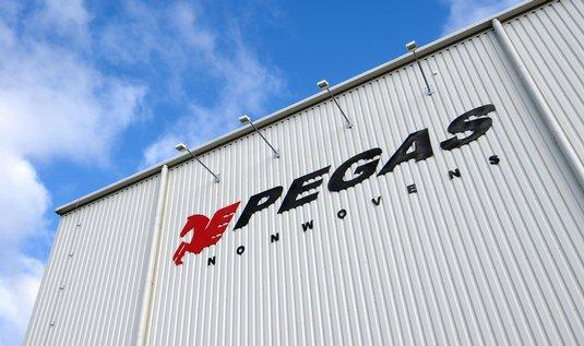 3-PEGAS_2