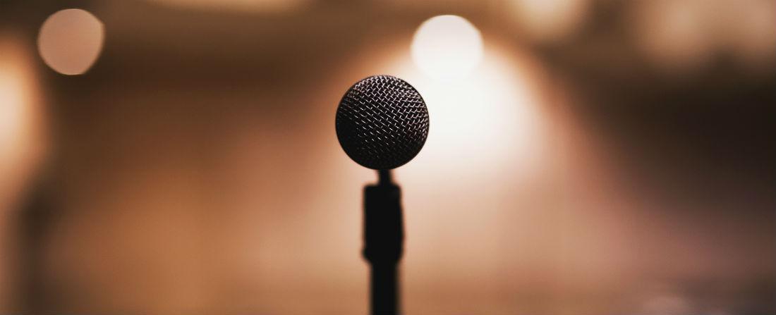 prezentace mikrofon