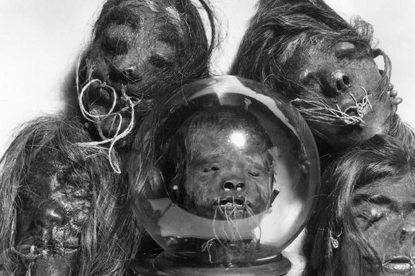 Cage se rozhodl investovat i do takových věcí, jako jsou vysušené hlavy trpasličích Pygmejů.