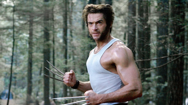 Hugh Jackman alias Wolverine