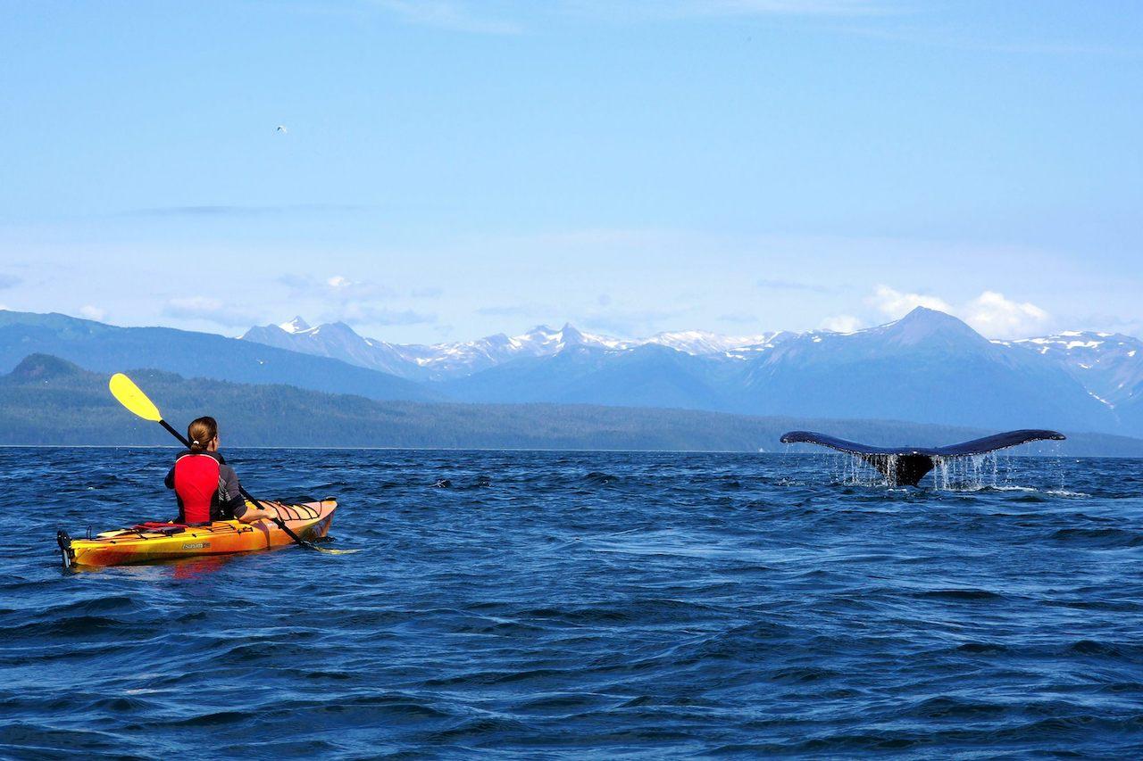 OutdoorVisit - Jana Tylová s velrybou na Aljašce